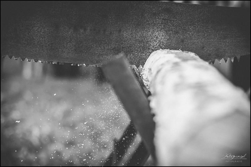 Hochzeit - Maria ♥ Derek in Torgau und Gestüt Graditz  Hochzeit - Maria ♥ Derek in Torgau und Gestüt Graditz  Hochzeit - Maria ♥ Derek in Torgau und Gestüt Graditz  Hochzeit - Maria ♥ Derek in Torgau und Gestüt Graditz  Hochzeit - Maria ♥ Derek in Torgau und Gestüt Graditz  Hochzeit - Maria ♥ Derek in Torgau und Gestüt Graditz  Hochzeit - Maria ♥ Derek in Torgau und Gestüt Graditz  Hochzeit - Maria ♥ Derek in Torgau und Gestüt Graditz  Hochzeit - Maria ♥ Derek in Torgau und Gestüt Graditz  Hochzeit - Maria ♥ Derek in Torgau und Gestüt Graditz  Hochzeit - Maria ♥ Derek in Torgau und Gestüt Graditz  Hochzeit - Maria ♥ Derek in Torgau und Gestüt Graditz  Hochzeit - Maria ♥ Derek in Torgau und Gestüt Graditz  Hochzeit - Maria ♥ Derek in Torgau und Gestüt Graditz  Hochzeit - Maria ♥ Derek in Torgau und Gestüt Graditz  Hochzeit - Maria ♥ Derek in Torgau und Gestüt Graditz  Hochzeit - Maria ♥ Derek in Torgau und Gestüt Graditz  Hochzeit - Maria ♥ Derek in Torgau und Gestüt Graditz  Hochzeit - Maria ♥ Derek in Torgau und Gestüt Graditz  Hochzeit - Maria ♥ Derek in Torgau und Gestüt Graditz  Hochzeit - Maria ♥ Derek in Torgau und Gestüt Graditz  Hochzeit - Maria ♥ Derek in Torgau und Gestüt Graditz  Hochzeit - Maria ♥ Derek in Torgau und Gestüt Graditz  Hochzeit - Maria ♥ Derek in Torgau und Gestüt Graditz  Hochzeit - Maria ♥ Derek in Torgau und Gestüt Graditz  Hochzeit - Maria ♥ Derek in Torgau und Gestüt Graditz  Hochzeit - Maria ♥ Derek in Torgau und Gestüt Graditz  Hochzeit - Maria ♥ Derek in Torgau und Gestüt Graditz  Hochzeit - Maria ♥ Derek in Torgau und Gestüt Graditz  Hochzeit - Maria ♥ Derek in Torgau und Gestüt Graditz  Hochzeit - Maria ♥ Derek in Torgau und Gestüt Graditz  Hochzeit - Maria ♥ Derek in Torgau und Gestüt Graditz  Hochzeit - Maria ♥ Derek in Torgau und Gestüt Graditz  Hochzeit - Maria ♥ Derek in Torgau und Gestüt Graditz  Hochzeit - Maria ♥ Derek in Torgau und Gestüt Graditz  Hochzeit - Maria ♥ Derek in Torgau und Gestüt Graditz  Hochzeit - Maria ♥ D